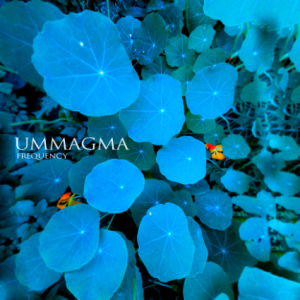 Ummagma_-_Frequency_(cover).jpg